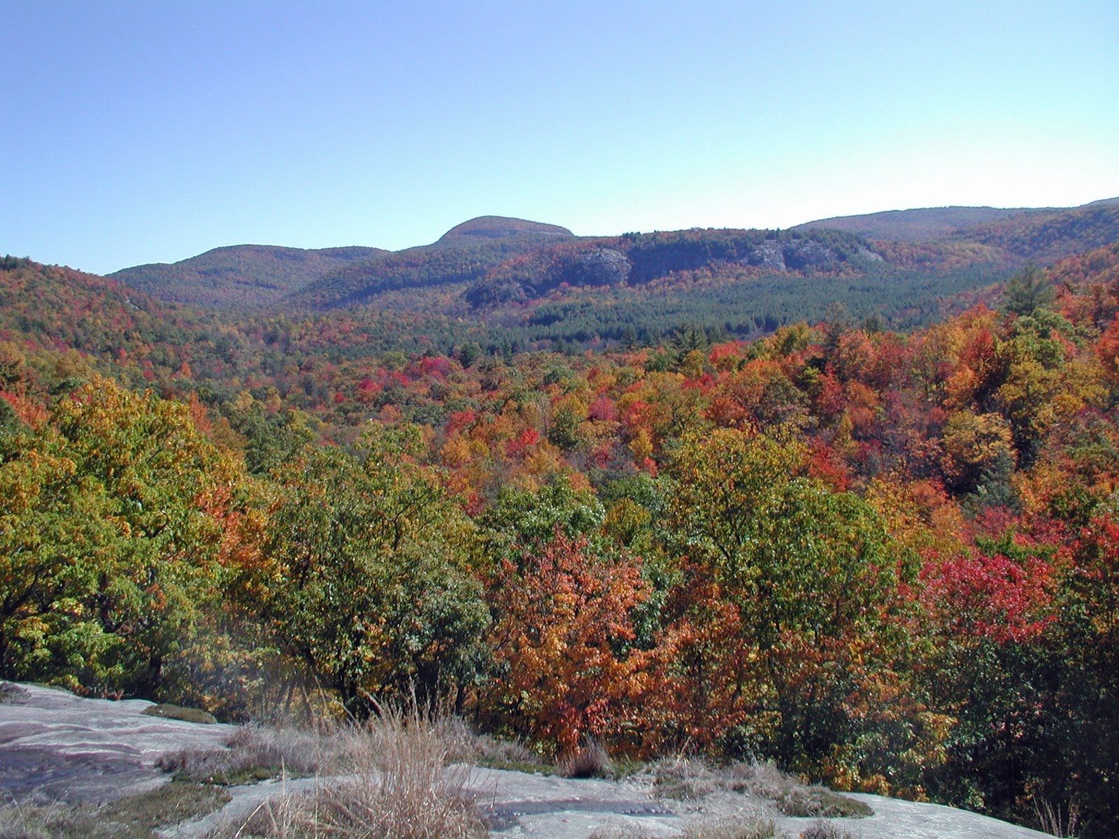 Autumn in Panthertown Valley