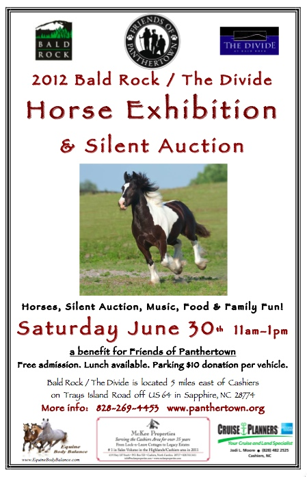 Horse Exhibition & Silent Auction