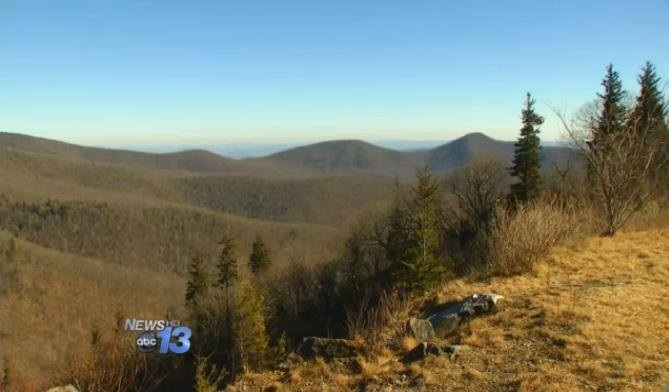 The Forest Service is requesting feedback from the public, and expects to modify the plan within the coming months in response to public comment.