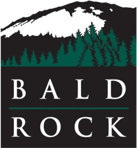 BaldRock-logo2-278x300
